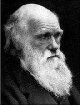 Darwin Charles Robert