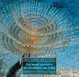 Στα κρυφά μονοπάτια των θαλασσινών μας βυθών
